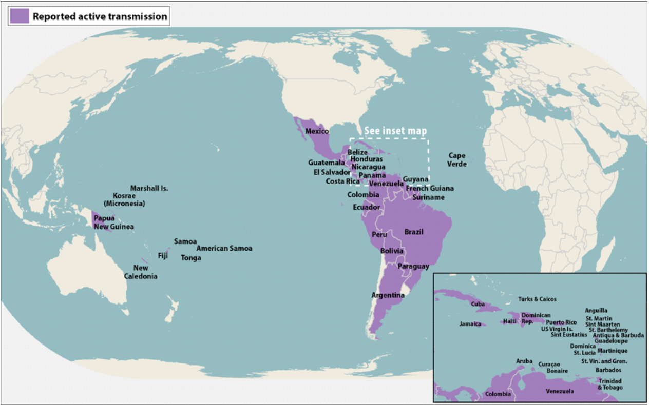 Zika-Fig-2
