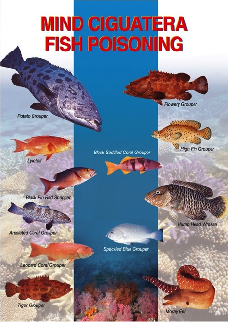 Partial list of fish known to cause Ciguatera Fish Poisoning.
